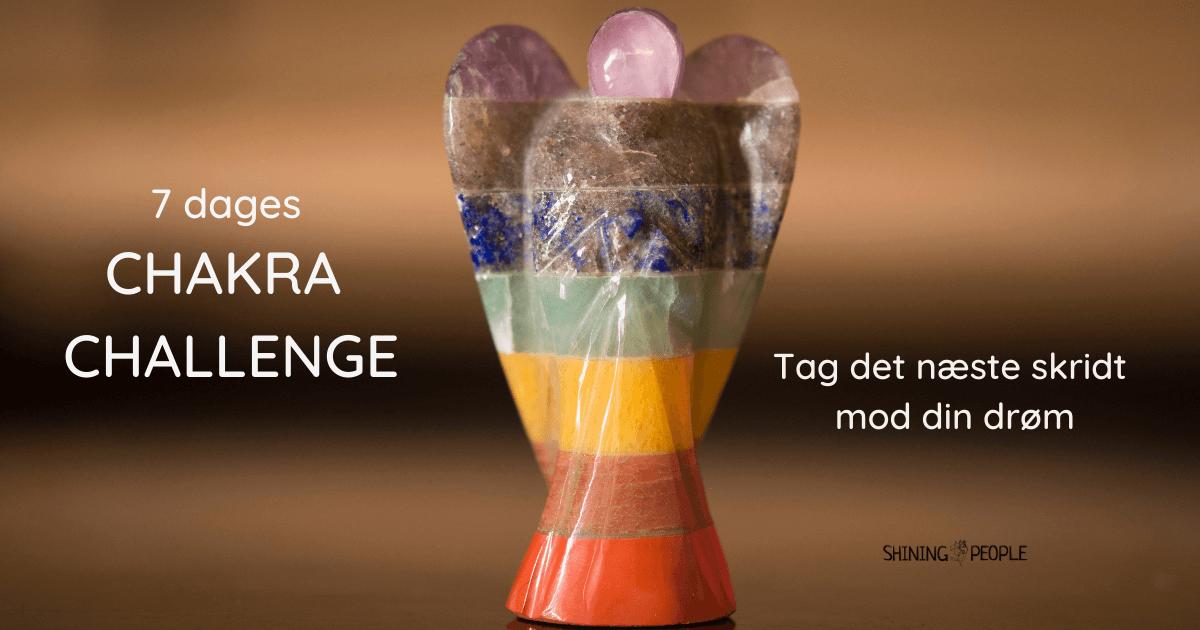 7 dages chakra challenge