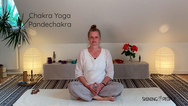 Joyann guider chakra yoga